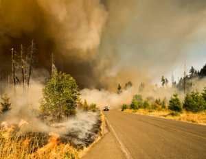 September is National Preparedness Month & Insurance Coverage in Tacoma, Washington